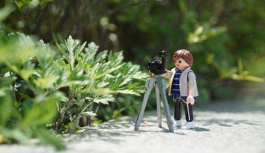 【カメラ】写真と動画残すならどっちが良い?