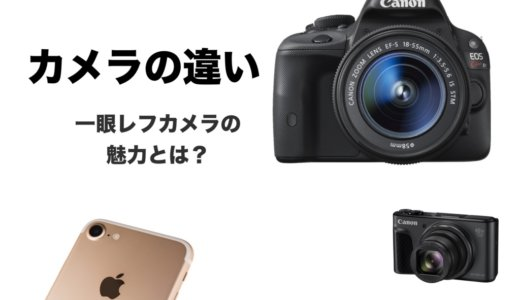 一眼レフと普通のカメラって何が違うの?どっちが良いの?違いを丁寧に解説します!